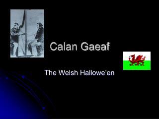 Calan Gaeaf