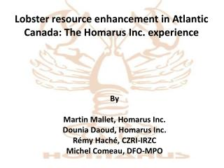 Lobster resource enhancement in Atlantic Canada: The Homarus Inc. experience