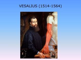 VESALIUS (1514-1564)