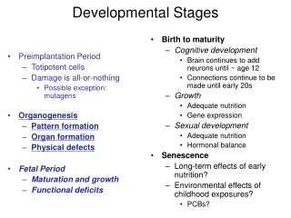 Developmental Stages