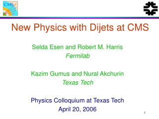 New Physics with Dijets at CMS