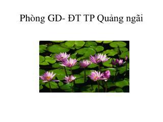 Phòng GD- ĐT TP Quảng ngãi