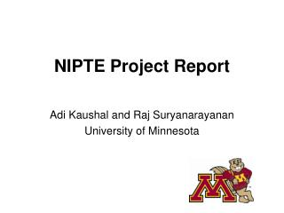 NIPTE Project Report