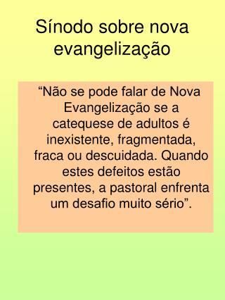 S�nodo sobre nova evangeliza��o