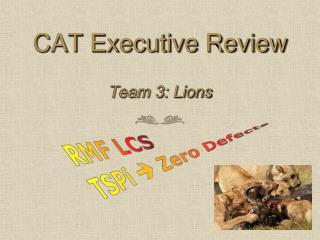 CAT Executive Review