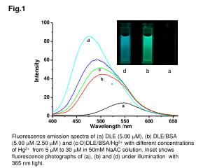 Fluorescence emission spectra of (a) DLE (5.00  M ), (b) DLE/BSA