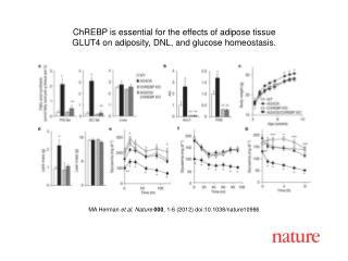 MA Herman  et al .  Nature 000 ,  1 - 6  (2012) doi:10.1038/nature10986