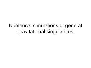 Numerical simulations of general gravitational singularities
