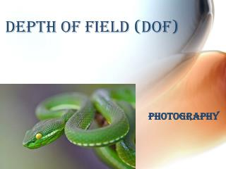 Depth of Field (DOF)