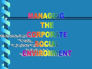 MANAGING  THE  CORPORATE  SOCIAL  ENVIRONMENT