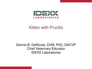 Kitten with Pruritis