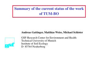 Summary of the current status of the work of TUM-BO