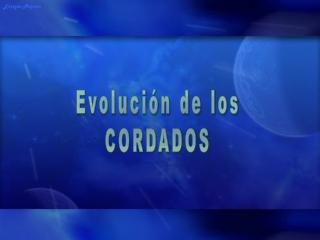 Evoluci??n de los cordados