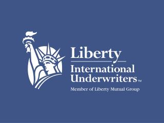 Liberty Mutual  Insurance Company -  An Overview