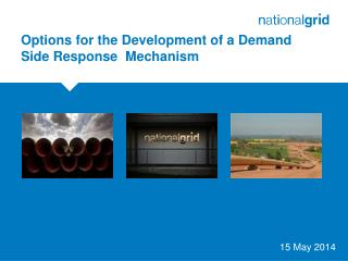 Options for the Development of a Demand Side Response  Mechanism