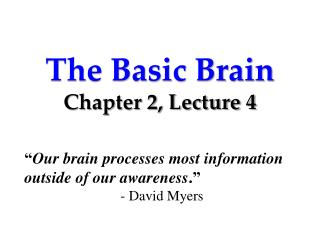 The Basic Brain Chapter 2, Lecture 4
