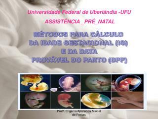 Universidade Federal de Uberlândia -UFU   ASSISTÊNCIA _PRÉ_NATAL