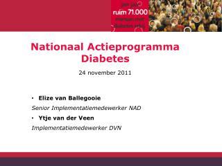 Nationaal Actieprogramma Diabetes 24 november 2011