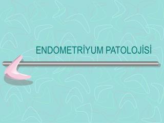 ENDOMETRİYUM PATOLOJİSİ