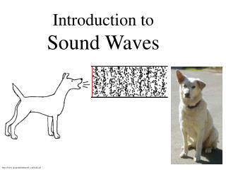 Introduction to  Sound Waves