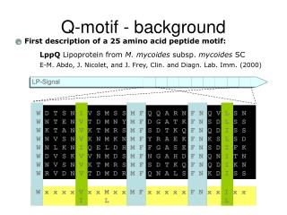 Q-motif - background