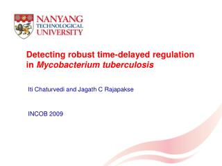 Detecting robust time-delayed regulation in  Mycobacterium tuberculosis