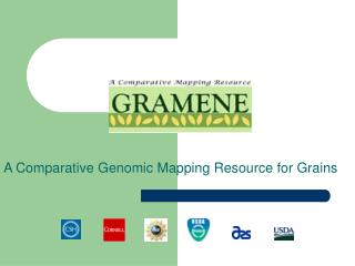 A Comparative Genomic Mapping Resource for Grains