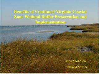 Benefits of Continued Virginia Coastal Zone Wetland Buffer Preservation and Implementation