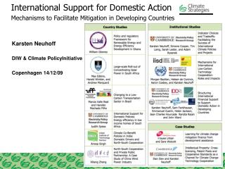 International Support for Domestic Action