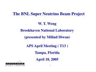The BNL Super Neutrino Beam Project