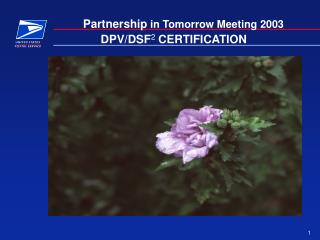 DPV/DSF 2  CERTIFICATION