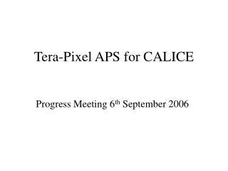 Tera-Pixel APS for CALICE