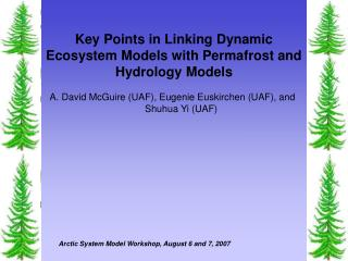 Key Points in Linking Dynamic Ecosystem Models with Permafrost and Hydrology Models