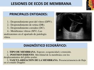 LESIONES DE ECOS DE MEMBRANA