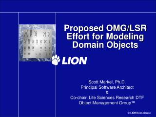 Proposed OMG/LSR Effort for Modeling Domain Objects