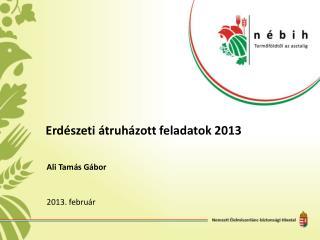 Erdészeti átruházott feladatok 2013