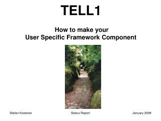 TELL1 How to make your  User Specific Framework Component