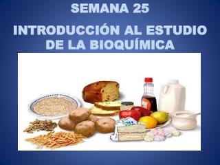 SEMANA 25 INTRODUCCIÓN AL ESTUDIO DE LA BIOQUÍMICA
