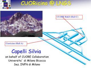 Cuoricino (Hall A)