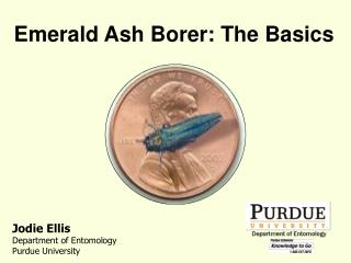 Emerald Ash Borer: The Basics
