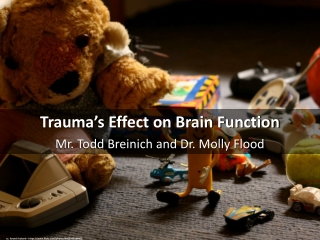 Fear and Learning:  Trauma-Related Factors in the Adult Education Process