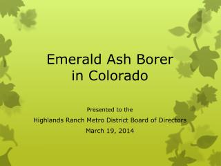 Emerald Ash Borer in Colorado