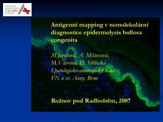 Antigenní mapping v nemolekulární diagnostice epidermolysis bullosa congenita