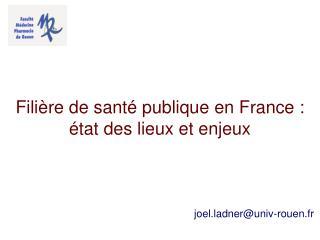 Filière de santé publique en France : état des lieux et enjeux