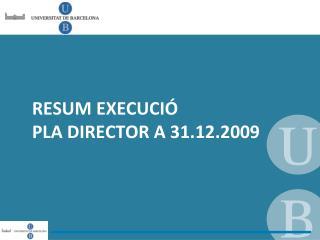RESUM EXECUCIÓ  PLA DIRECTOR A 31.12.2009