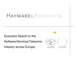 Executive Search to the Software/Services/Telecoms Industry across Europe