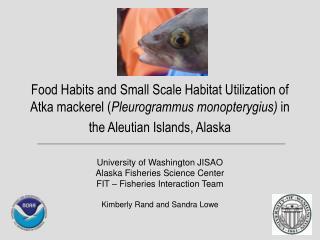 University of Washington JISAO Alaska Fisheries Science Center  FIT – Fisheries Interaction Team