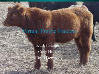 Virtual Prairie Feeders