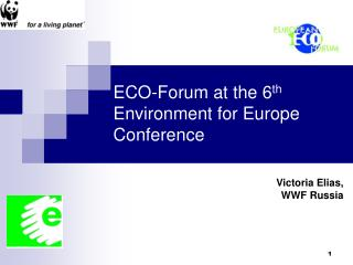 ECO-Forum at the 6 th  Environment for Europe Conference