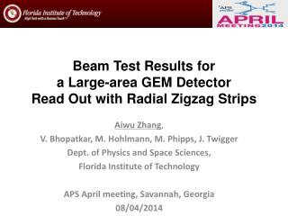 Beam  Test Results  for  a  L arge-area  GEM  Detector  Read Out  with  Radial Zigzag  S trips